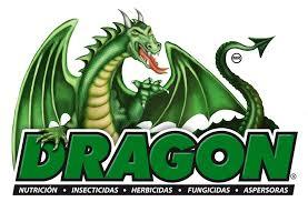 logo de empresa dragon